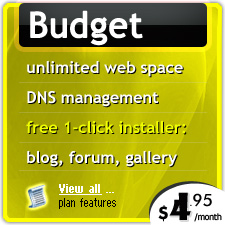 Budget web hosting with DNS management tools