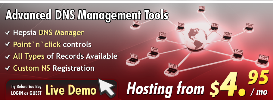 Advanced DNS management tools with the Hepsia control panel