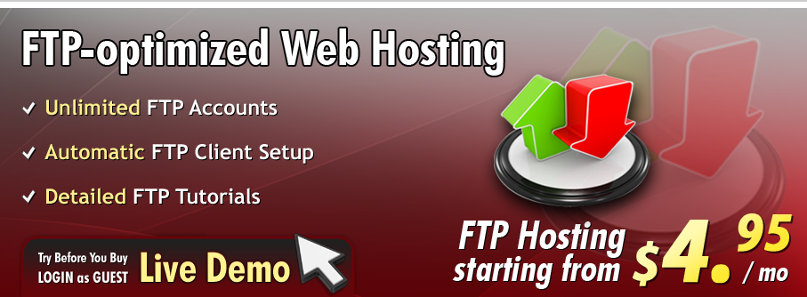 Unlimited FTP accounts with web hosting